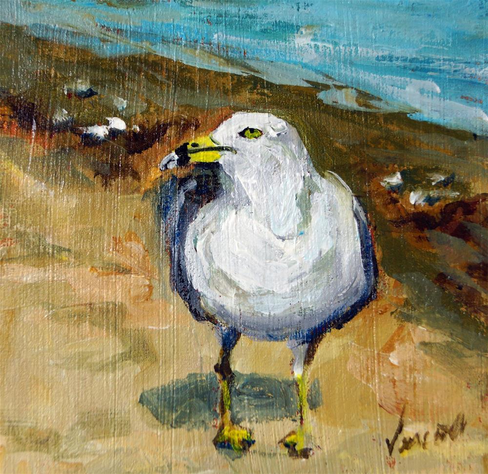 """Pigeon Toed Gull"" original fine art by Valerie Vescovi"