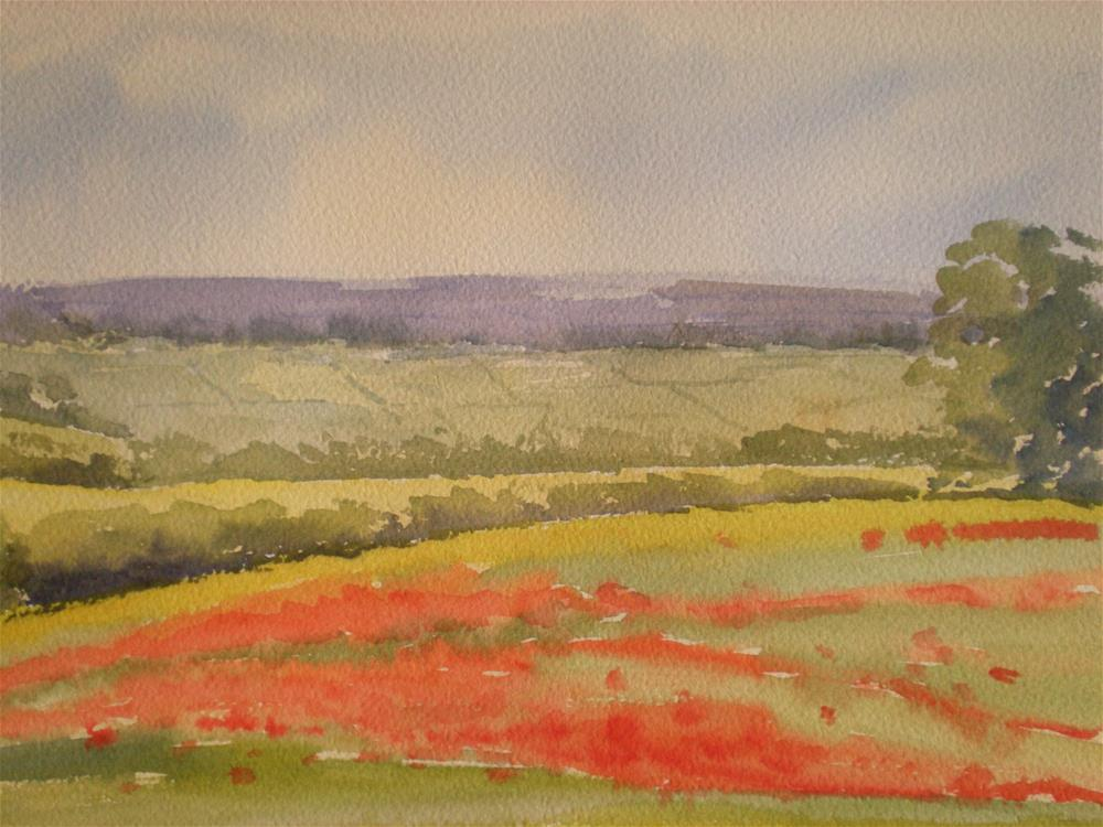 """Poppies on the Burford Road"" original fine art by Graham Findlay"