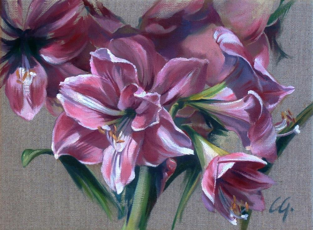 """Amaryllis Blossom"" original fine art by Carla Gauthier"
