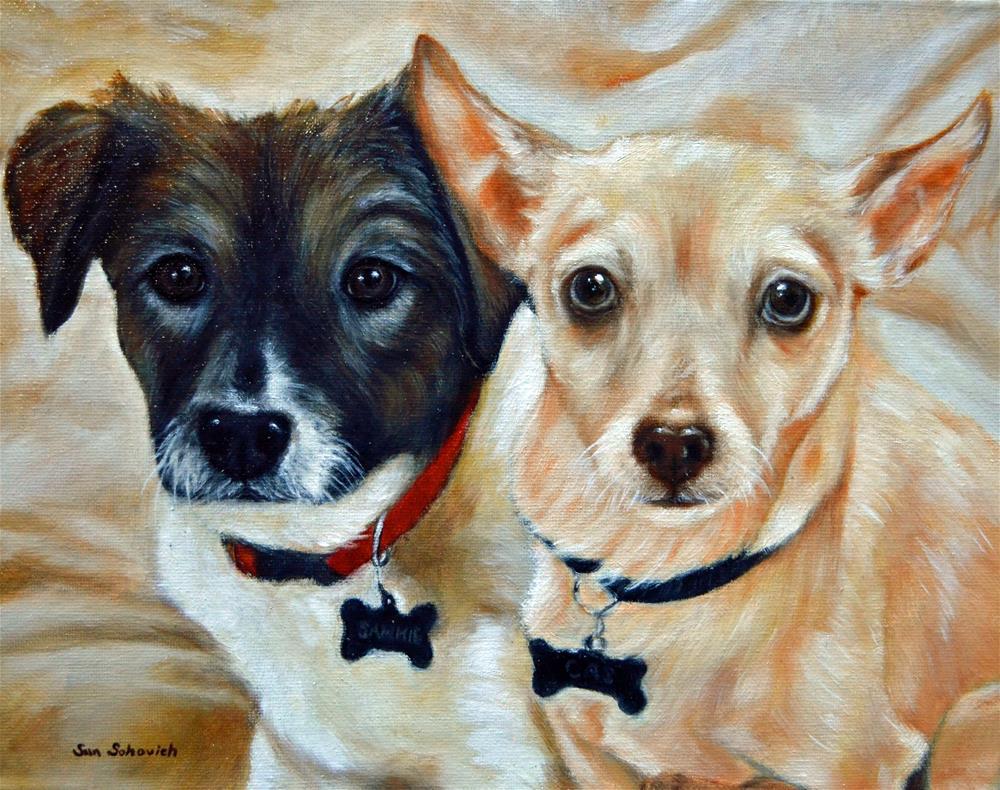 """Australian Shepard, chihuahua,"" original fine art by Sun Sohovich"