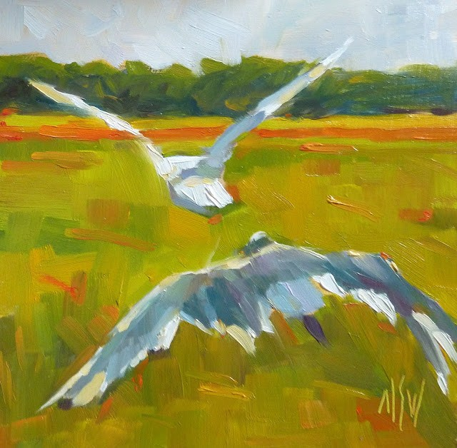"""Bird's Eye View 6x6 oil on board. I combined two shots of gulls to create this painting."" original fine art by Mary Sheehan Winn"
