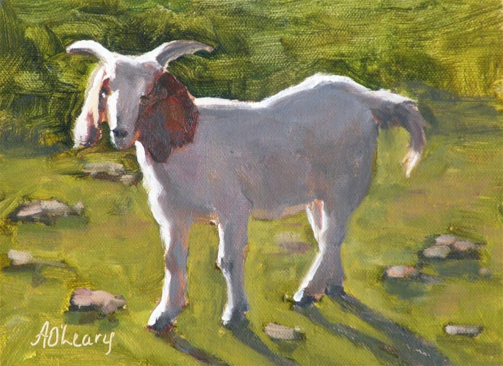 """Kreusler Goat"" original fine art by Alice O'Leary"