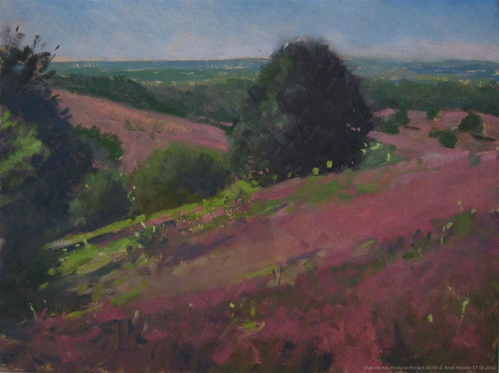 """Blooming heather. Over the Top. Posbank, The Netherlands"" original fine art by René PleinAir"