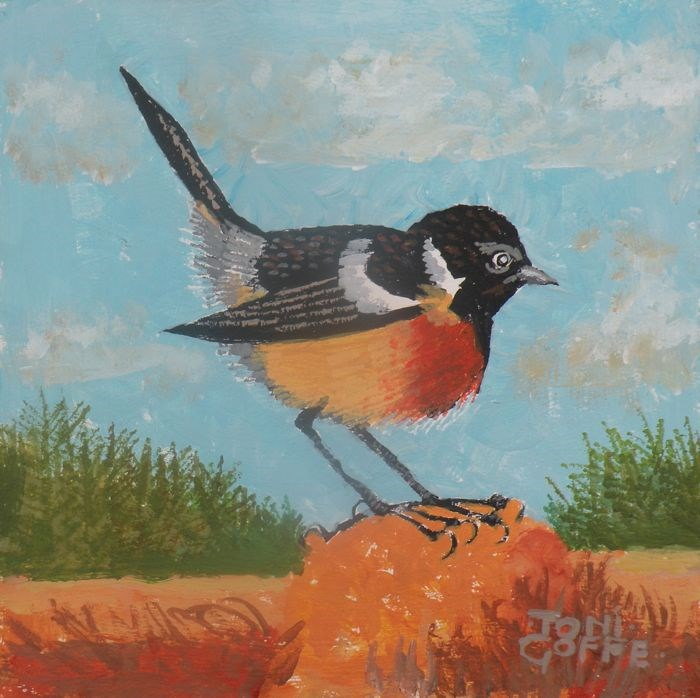 """Stonechat"" original fine art by Toni Goffe"