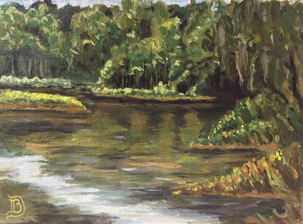 """#8 Silver Springs"" original fine art by Bobbie Deuell"