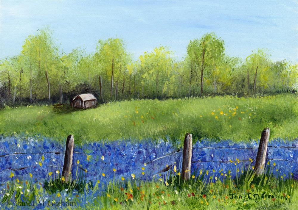 """Bluebonnet Field"" original fine art by Janet Graham"