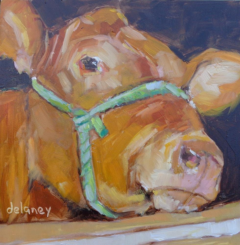 """Cow 84 JUST CHILLIN"" original fine art by Jean Delaney"