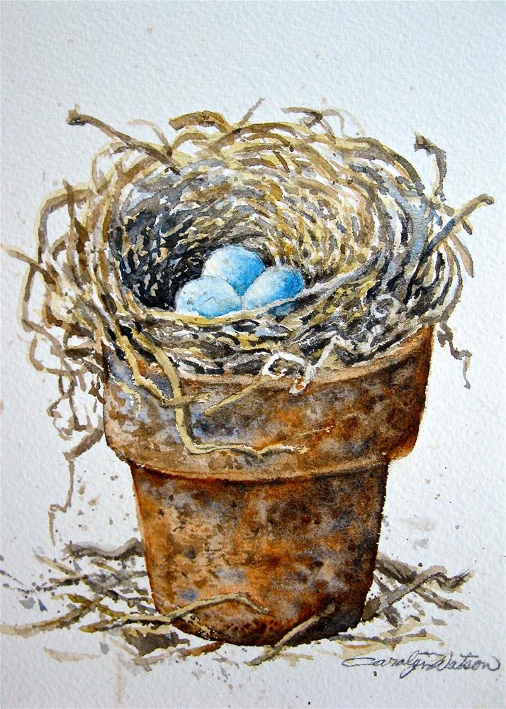"""Potted Nest"" original fine art by carolyn watson"