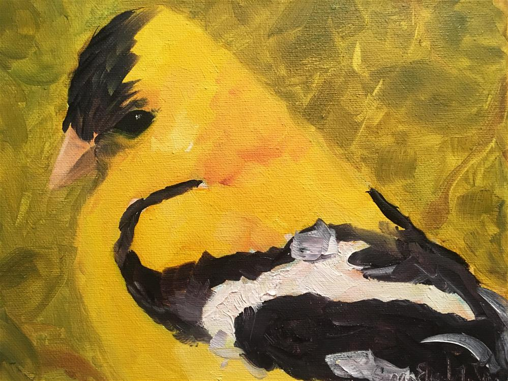 """Goldfinch"" original fine art by Susan Elizabeth Jones"