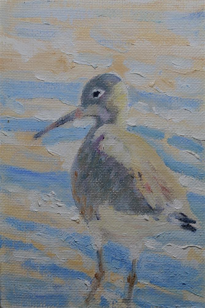 """Shore Bird -- Willet"" original fine art by Michael Saunders"