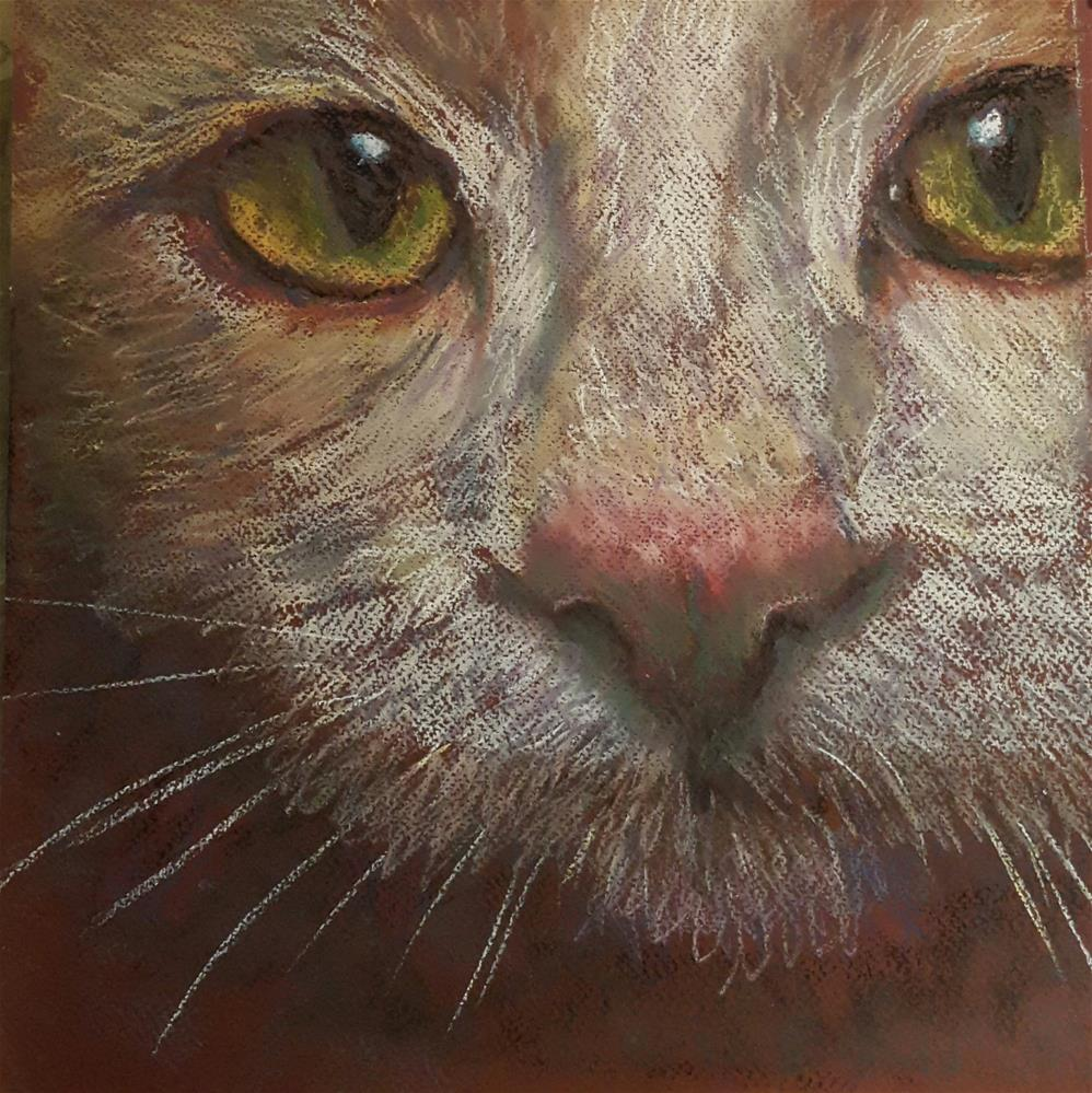 """Pink nose"" original fine art by Rentia Coetzee"