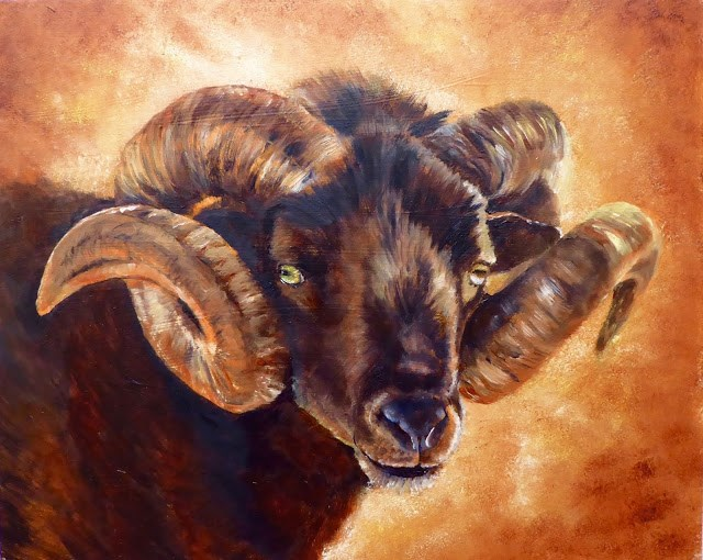 """Hebridean ram"" original fine art by Karen Robinson"