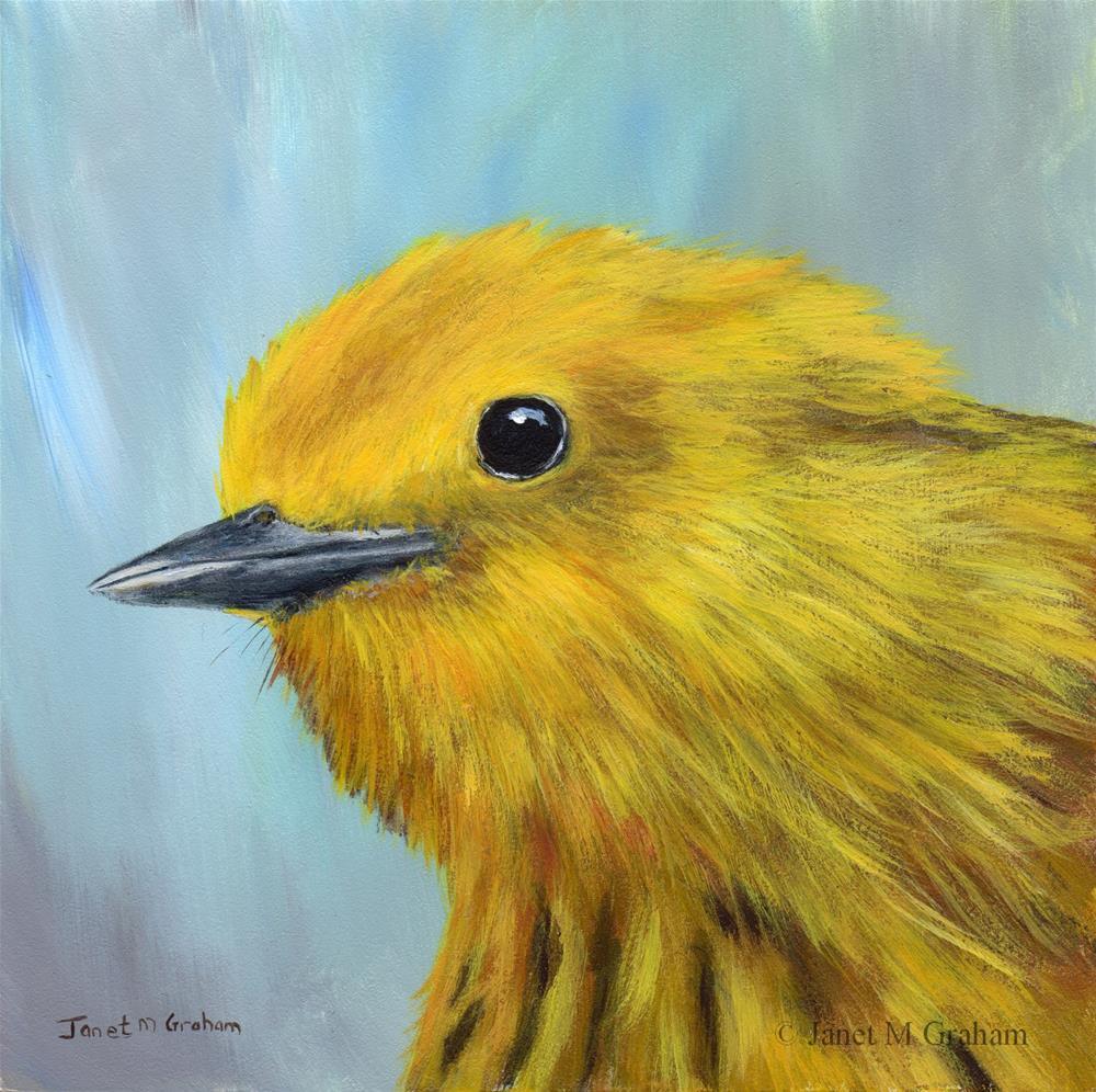 """Yellow Warbler 3"" original fine art by Janet Graham"