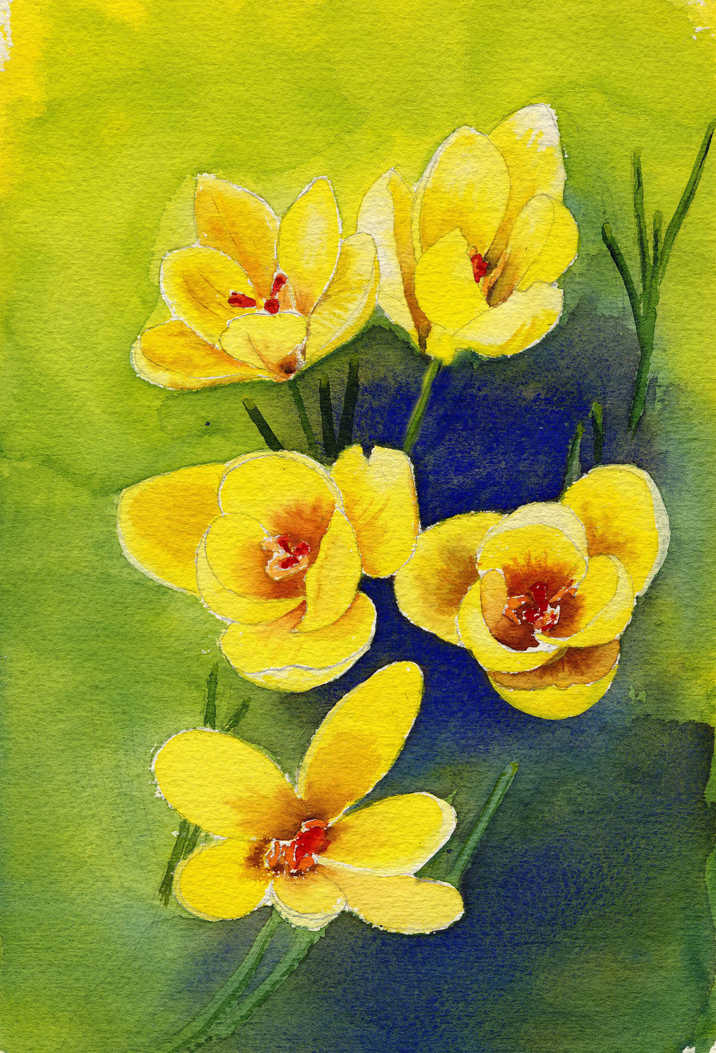 """Spring Crocus"" original fine art by Michelle Wolfe"