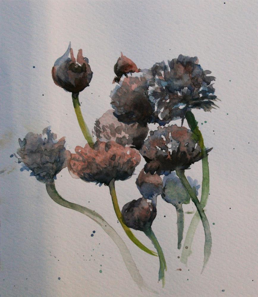"""""""Garlic Flowers from a Scottish Garden"""" original fine art by Julie Snyder"""