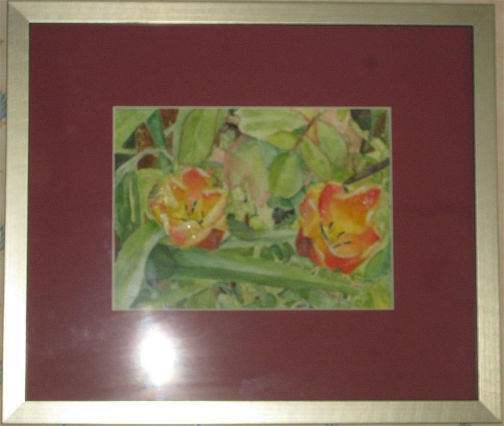 """Two Toned Tulips"" original fine art by Michelle Archer"