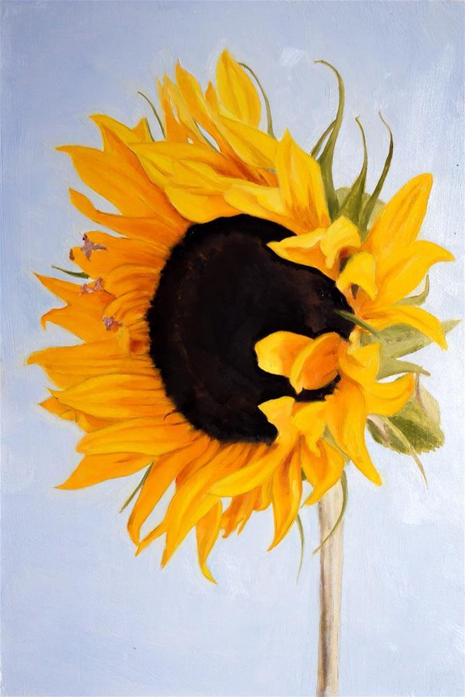 """Sunflower"" original fine art by James Coates"