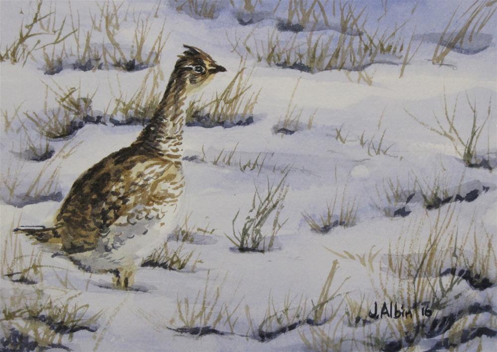 """Sharp-tail Quail"" original fine art by Jane Albin"