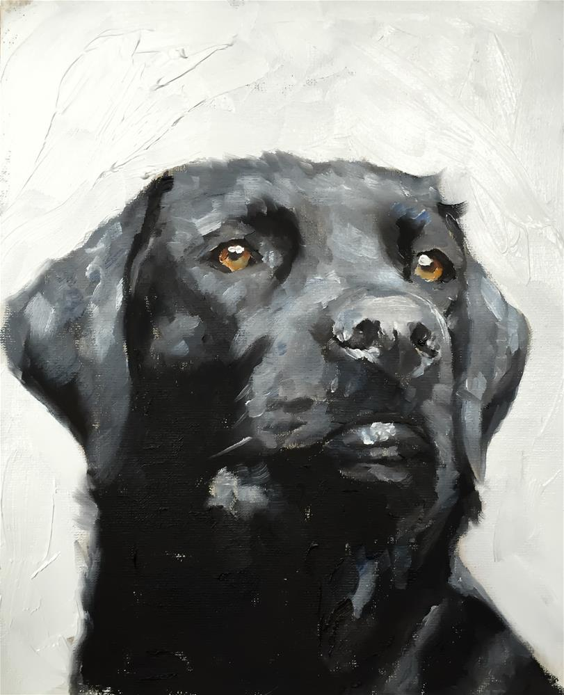 """Labrador"" original fine art by James Coates"