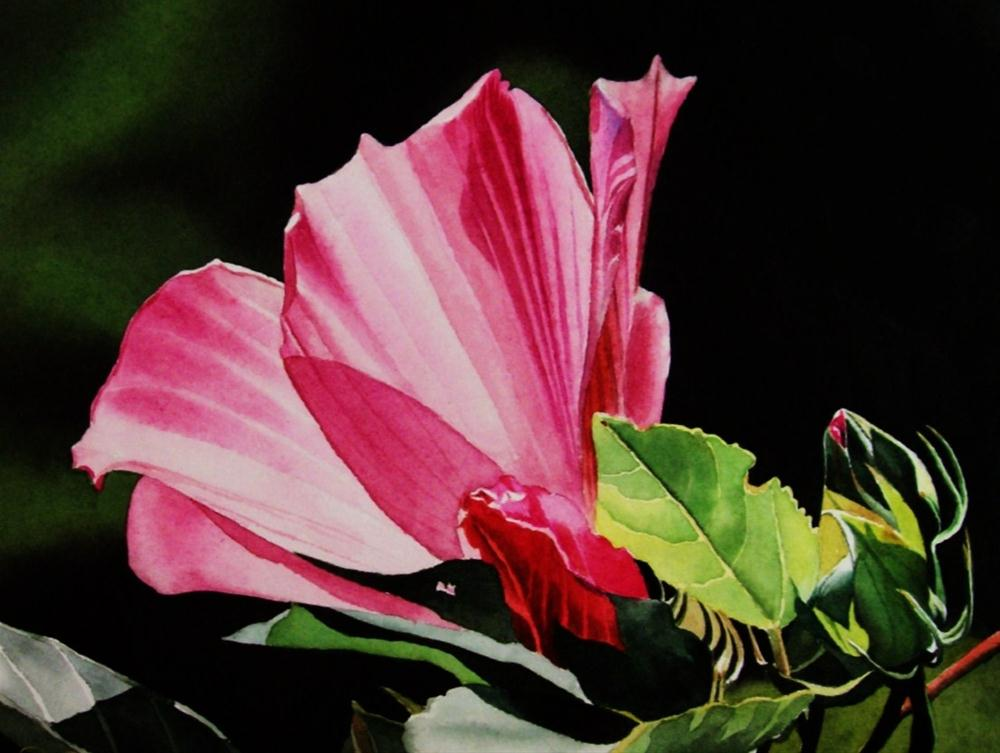 """""""Pink Hybiscus with Buds"""" original fine art by Jacqueline Gnott, whs"""