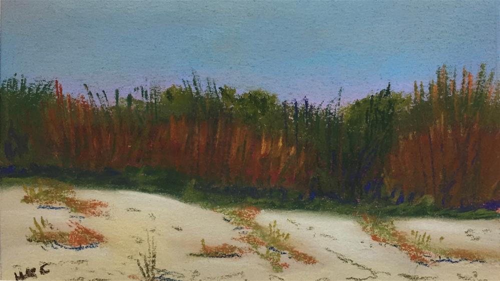 """Study of Sand Dues # 7"" original fine art by Howard Clark"