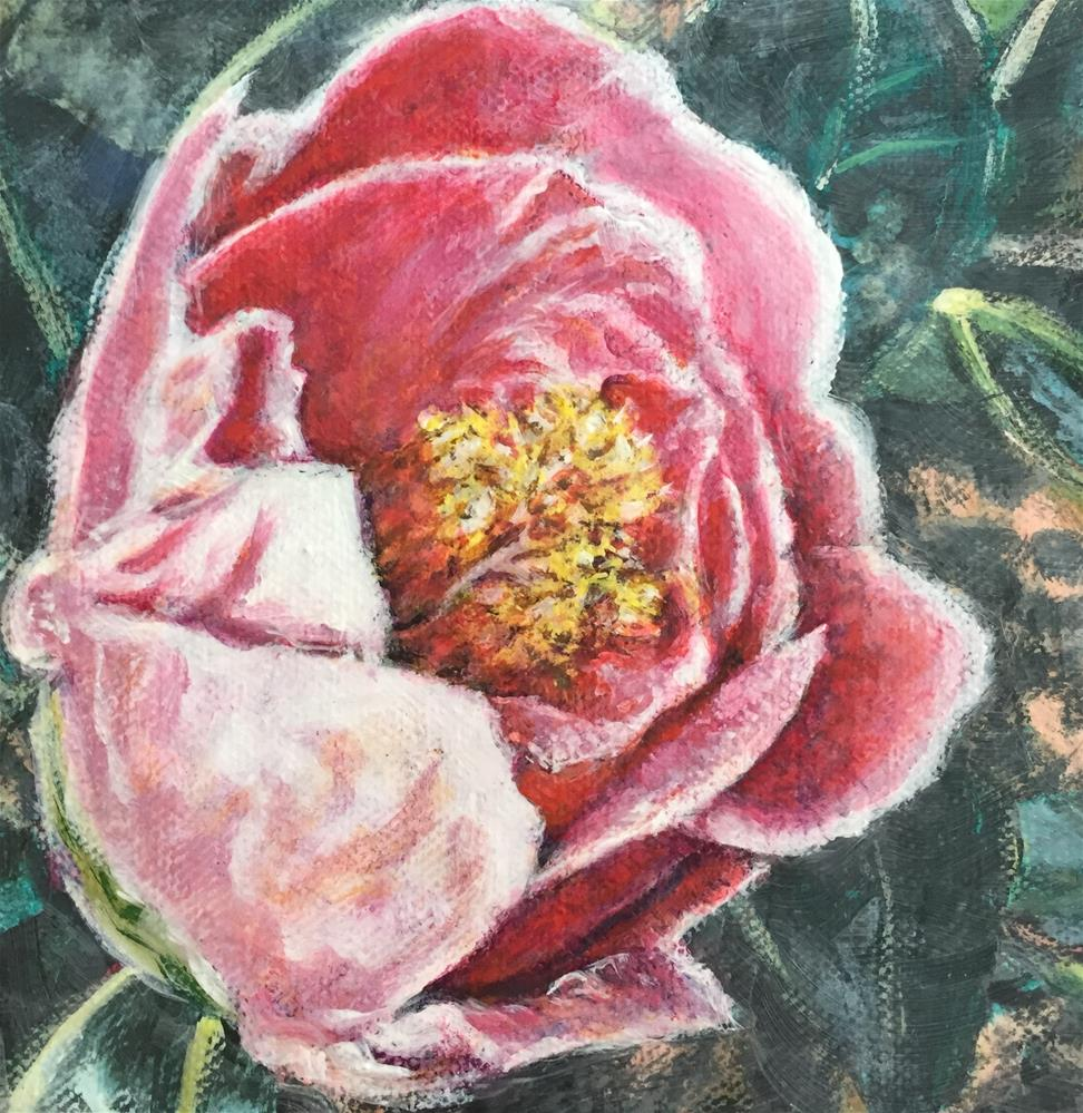 """Winter Camellia"" original fine art by Debbie Yacenda"