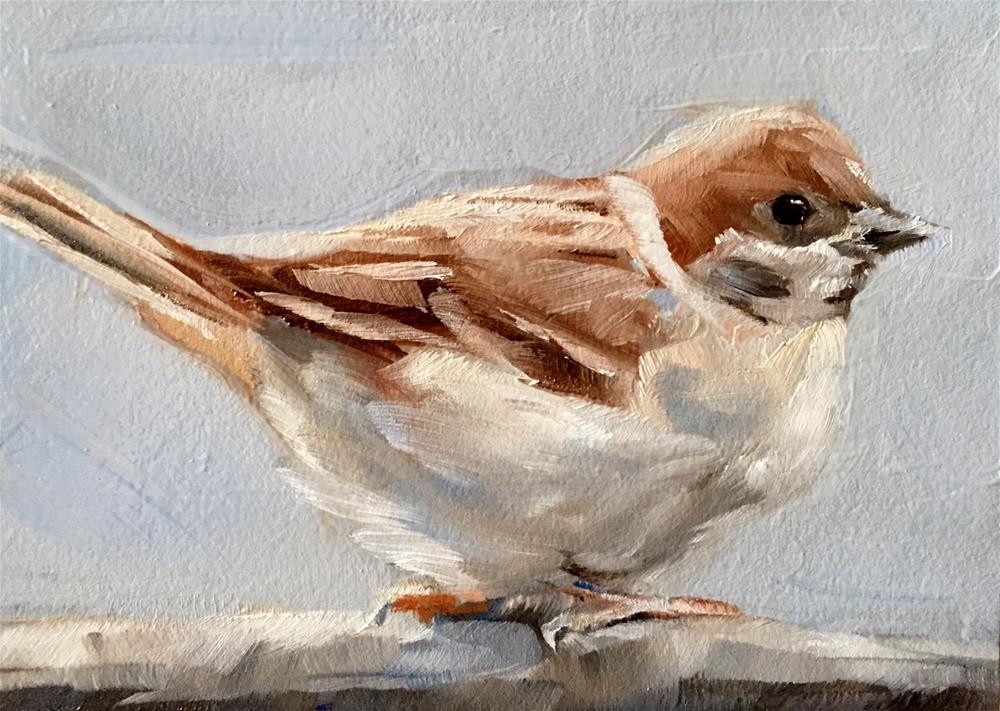"""Mr. English Sparrow"" original fine art by Gary Bruton"