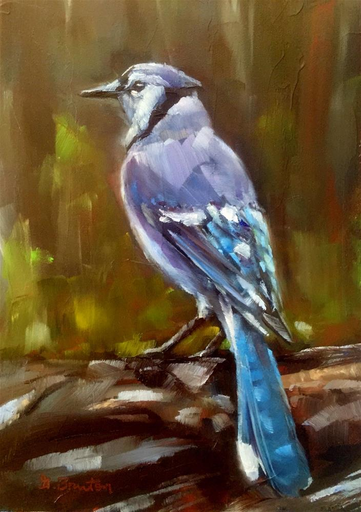 """Jaybird"" original fine art by Gary Bruton"
