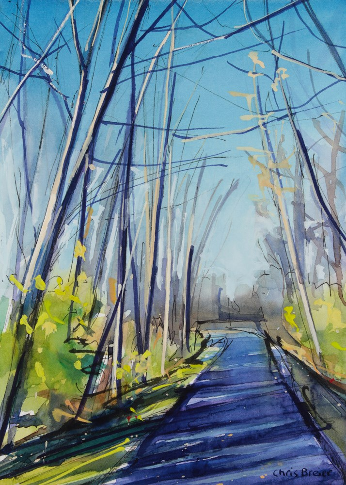 """Wooded Path"" original fine art by Chris Breier"