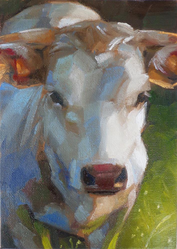 """White cow"" original fine art by Maria Z."