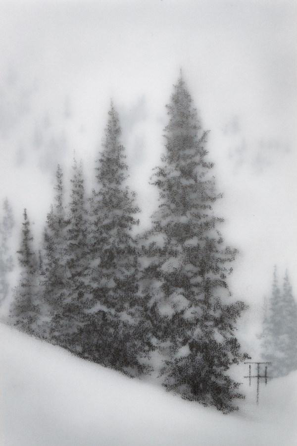 """Mountain Spruce I"" original fine art by Terri Heinrichs"