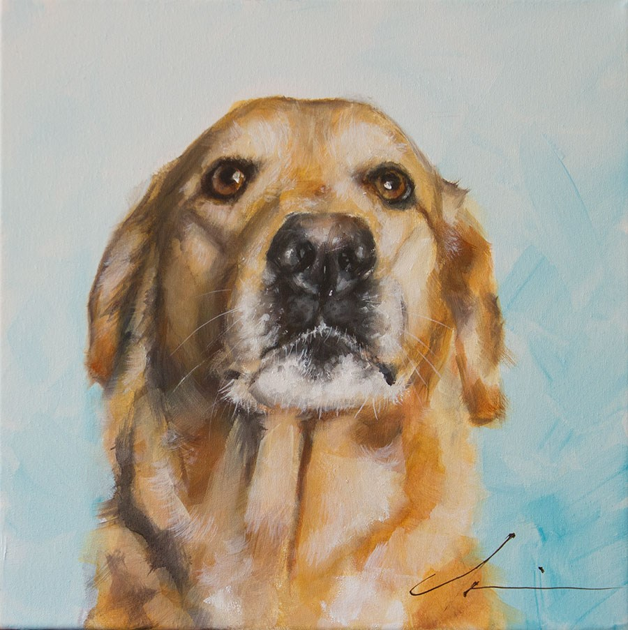 """Marley"" original fine art by Clair Hartmann"
