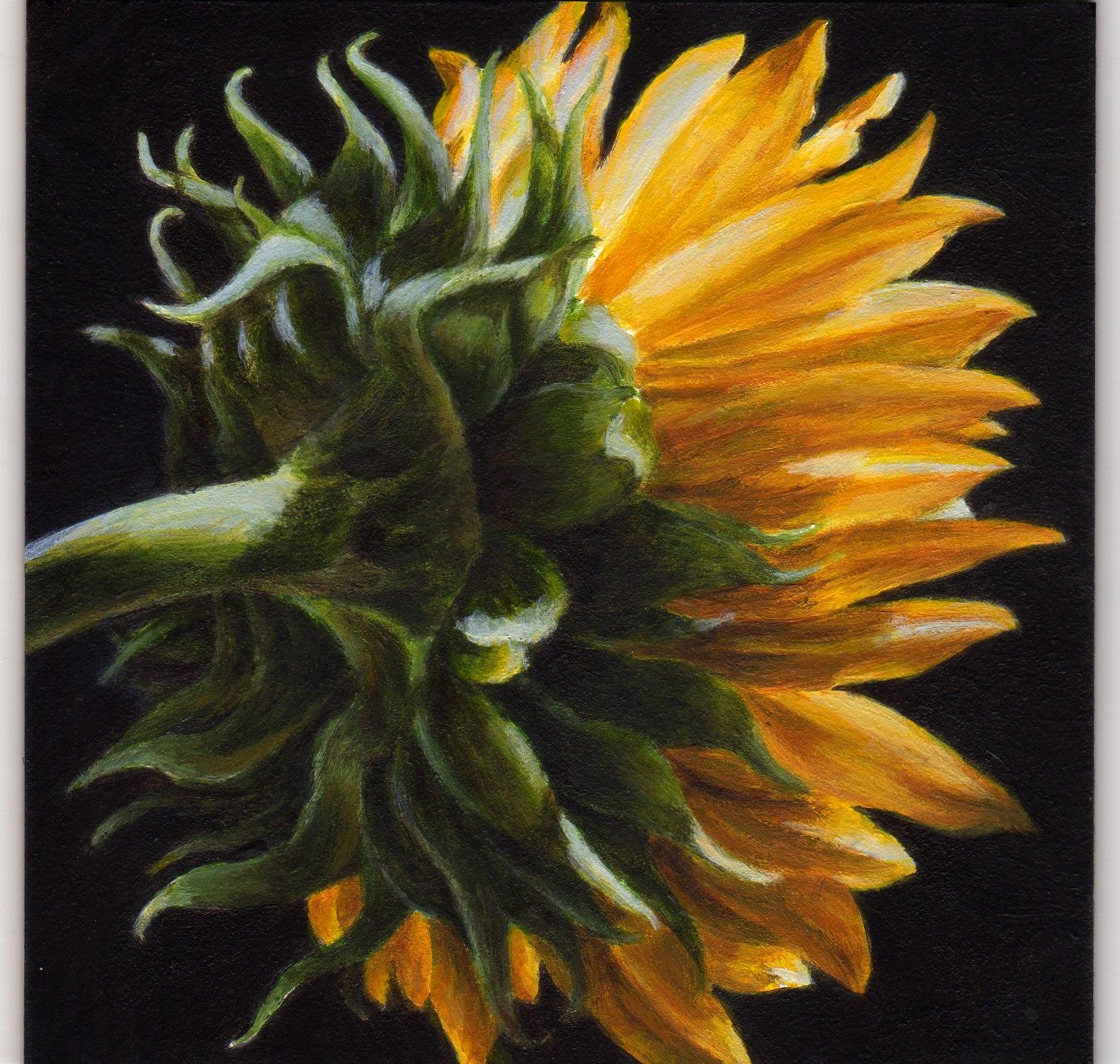 """""""Into the Light"""" original fine art by Debbie Shirley"""
