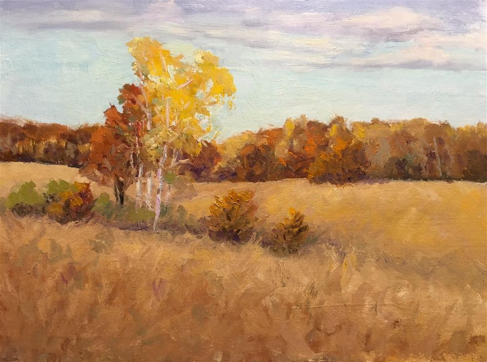 """Amber Afternoon"" original fine art by Judith Anderson"