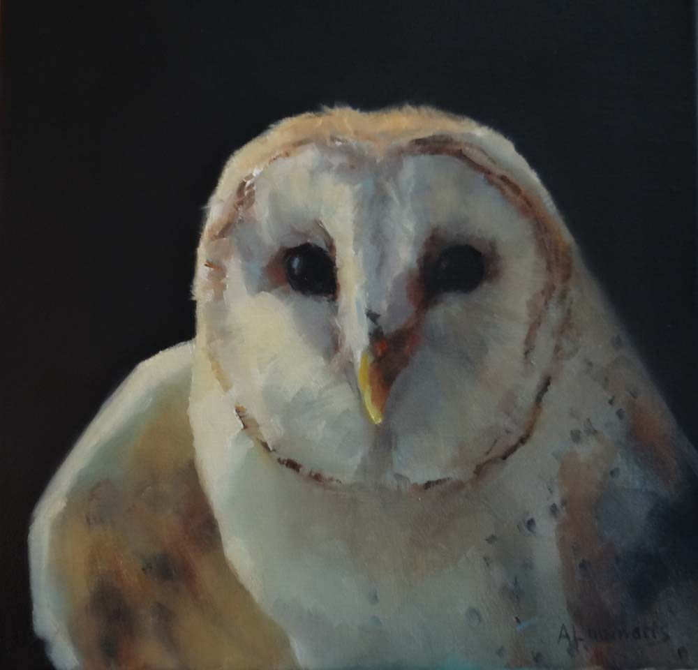 """Barn Owl"" original fine art by Adele Loomans"