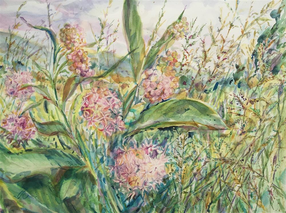 """Milkweed"" original fine art by Jean Krueger"