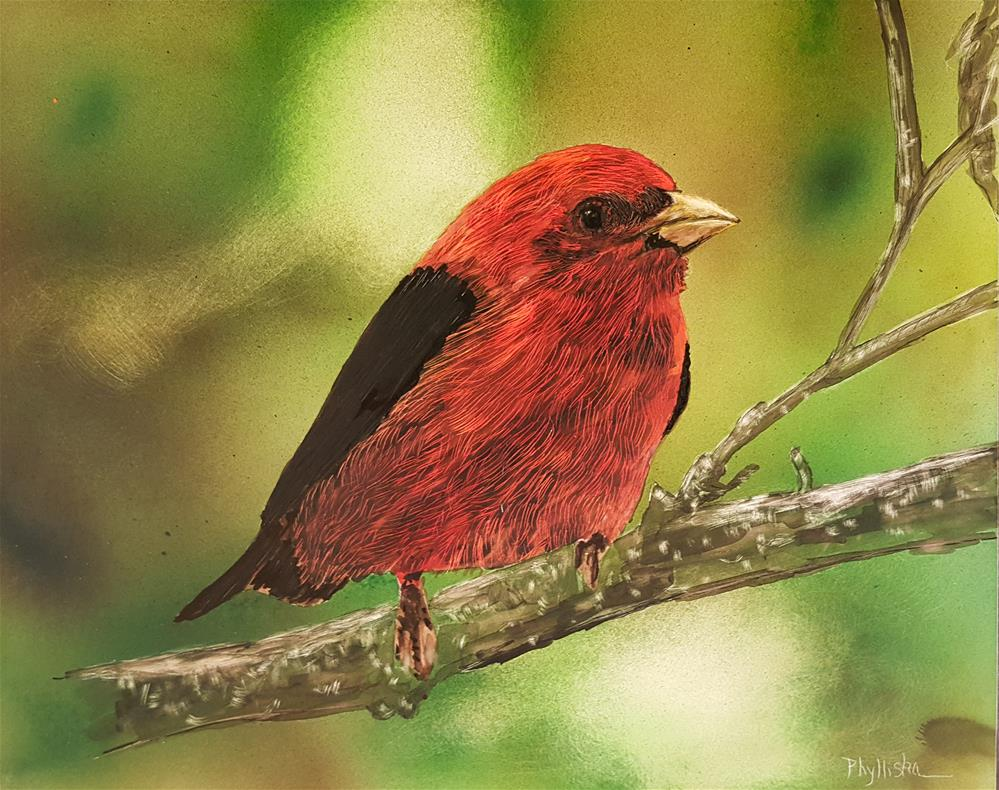 """Scarlet Tanager II"" original fine art by Phyllisha Hamrick"