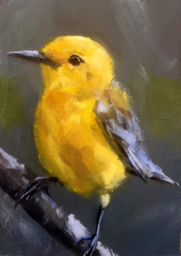 """Prothonotary Warbler"" original fine art by Gary Bruton"