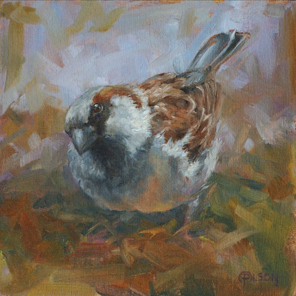 """""""bird's eye view"""" original fine art by Priscilla Olson"""