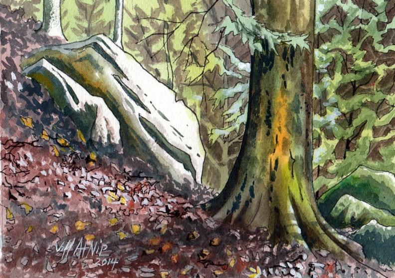 """Big South Fork Hillside"" original fine art by Jeff Atnip"