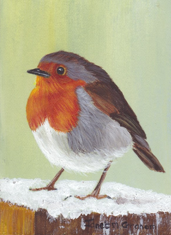 """Robin 2 ACEO"" original fine art by Janet Graham"
