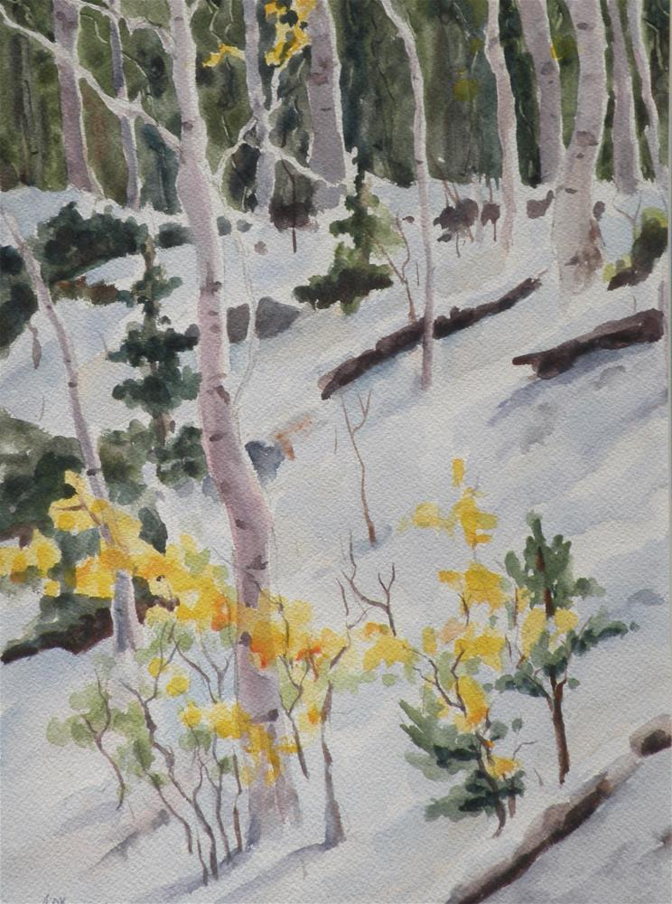 """Mountain Aspen"" original fine art by Alice O'Leary"