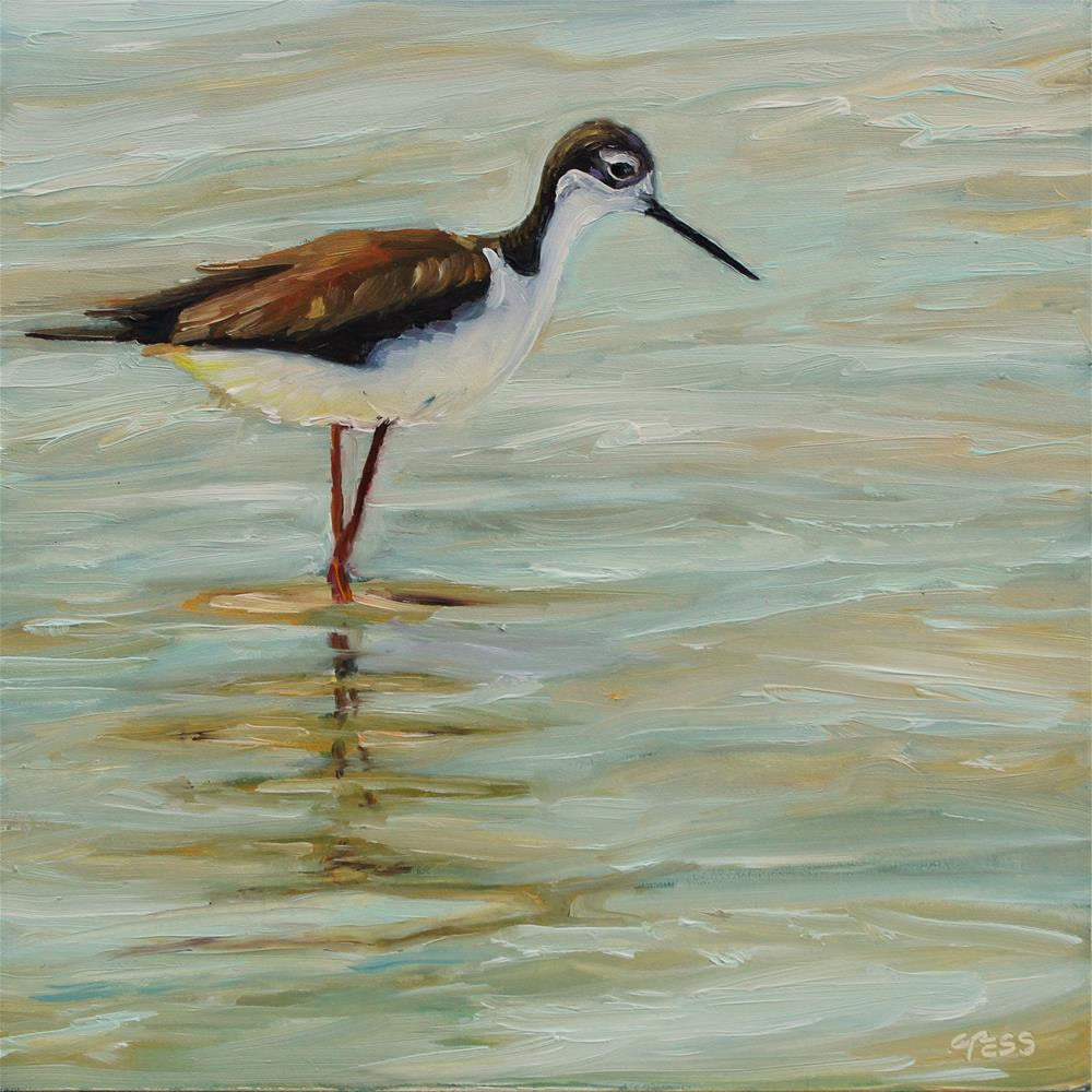"""Day 6- Black Necked Stilt"" original fine art by Tess Lehman"