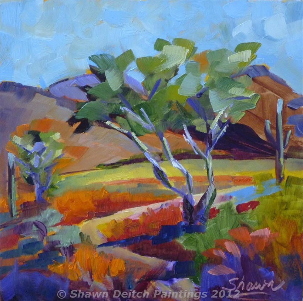 """""""Dove Mountain Desert 3"""" original fine art by Shawn Deitch"""