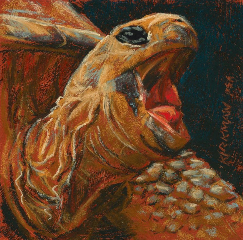 """Yawning Tortoise"" original fine art by Rita Kirkman"