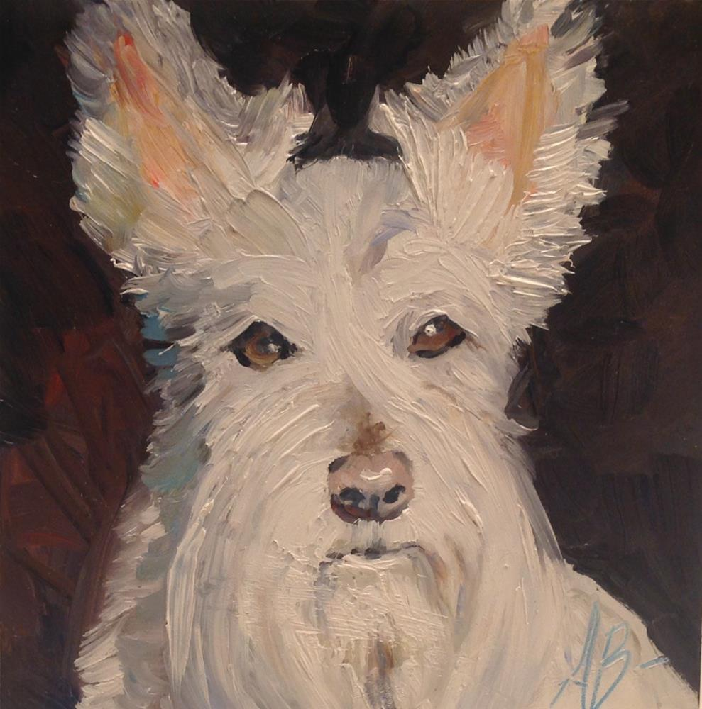 """Scottish Terrier"" original fine art by Annette Balesteri"
