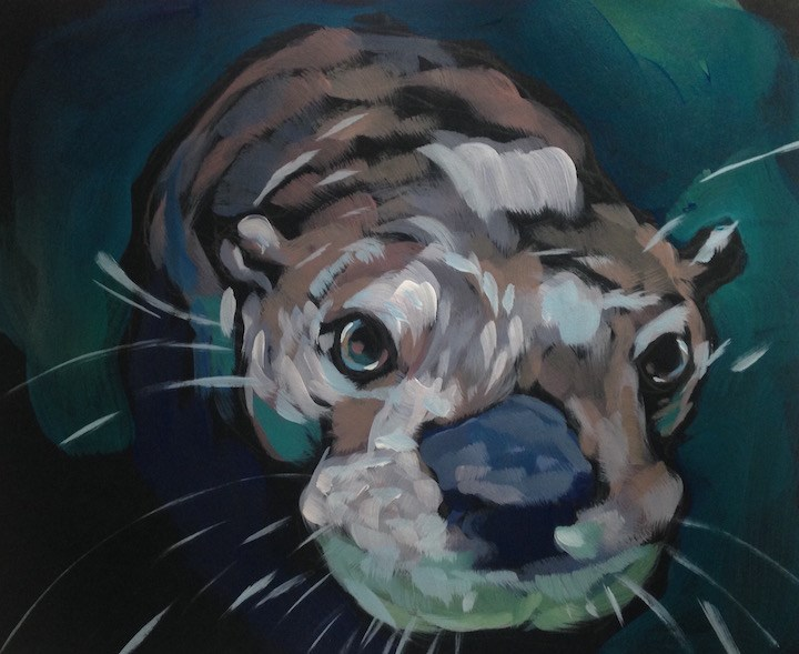 """Otter Face- Looking At You"" original fine art by Kat Corrigan"