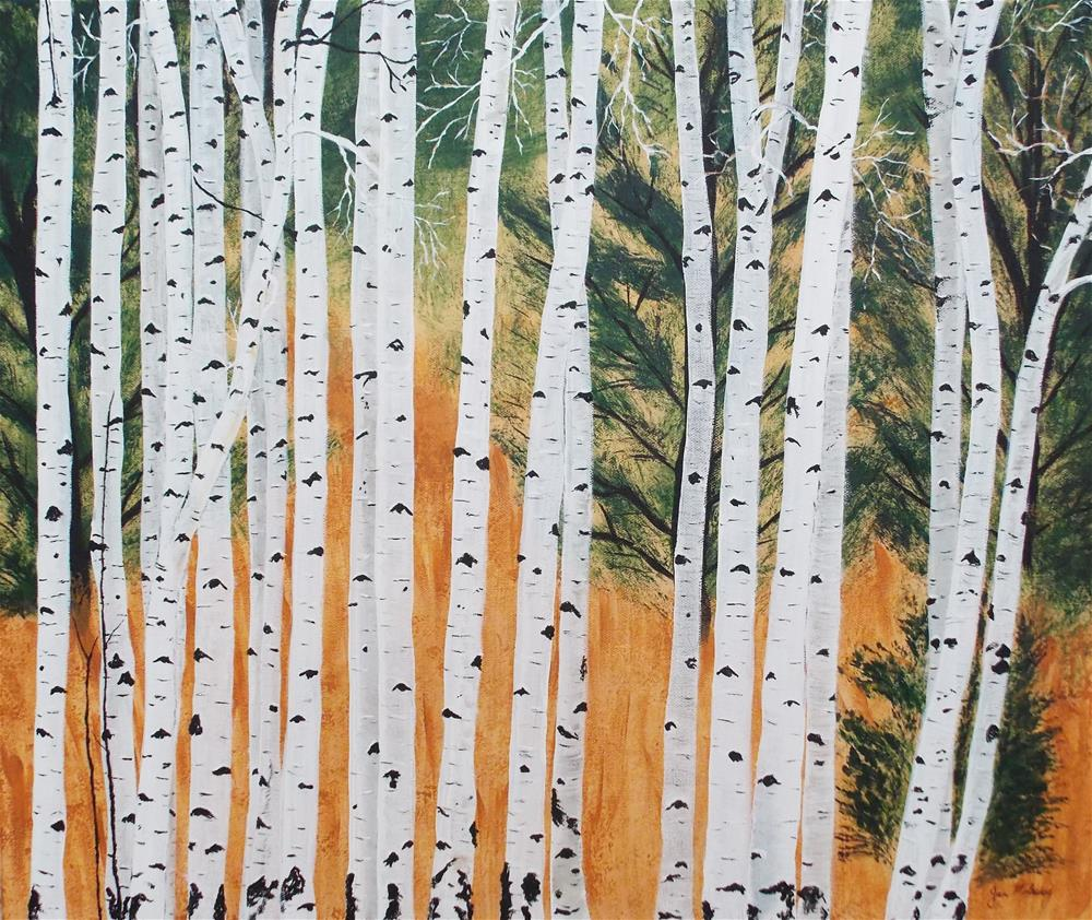 """White Aspen Woods"" original fine art by Jan Molesky"