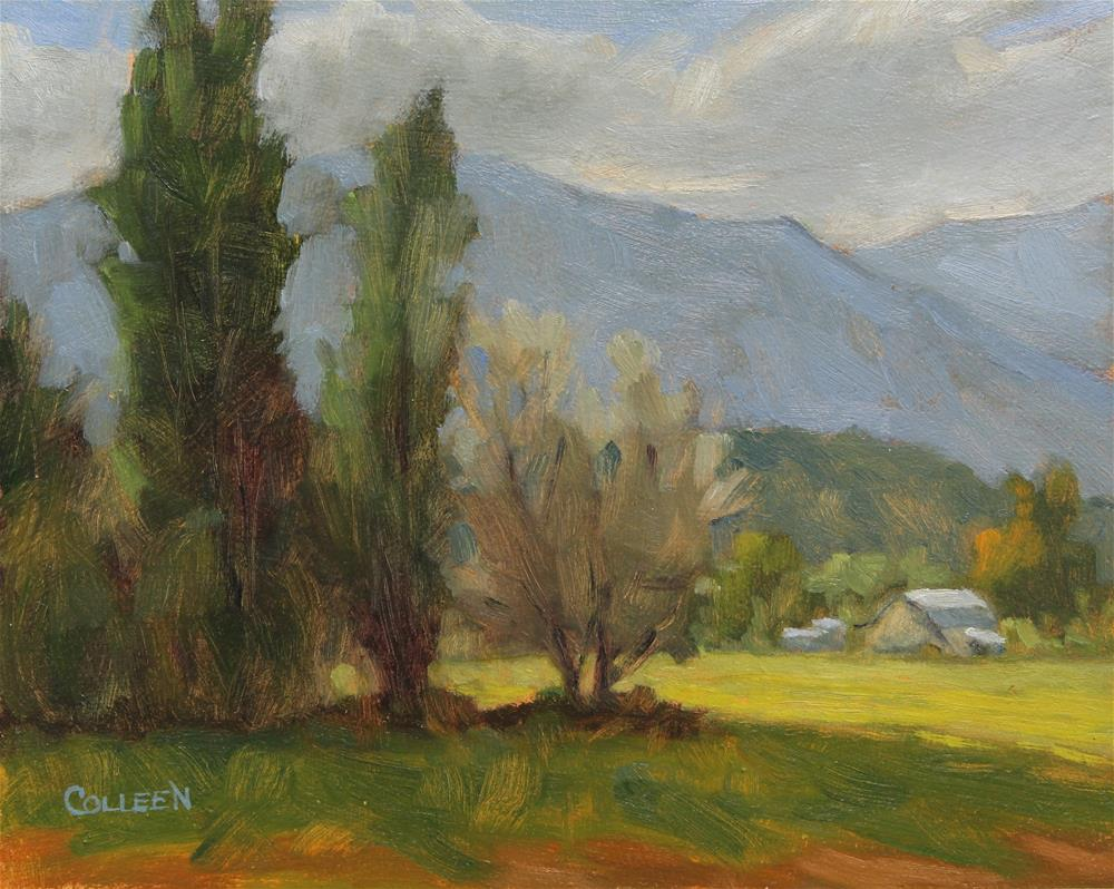 """A Sunny Field"" original fine art by Colleen Parker"