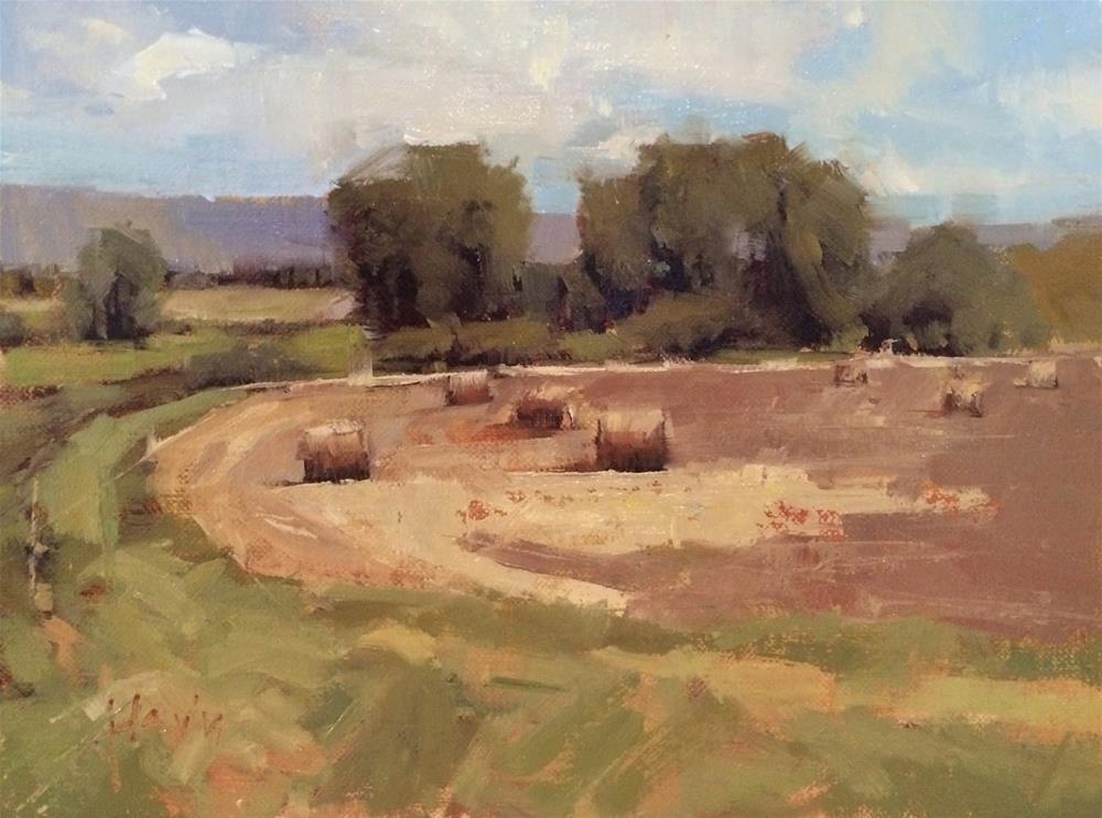 """""""In the Round"""" original fine art by Julie Davis"""